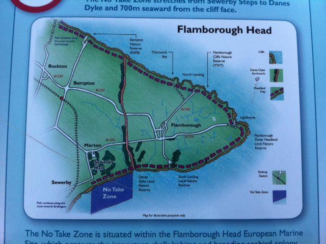 Flamborough Head no take zone