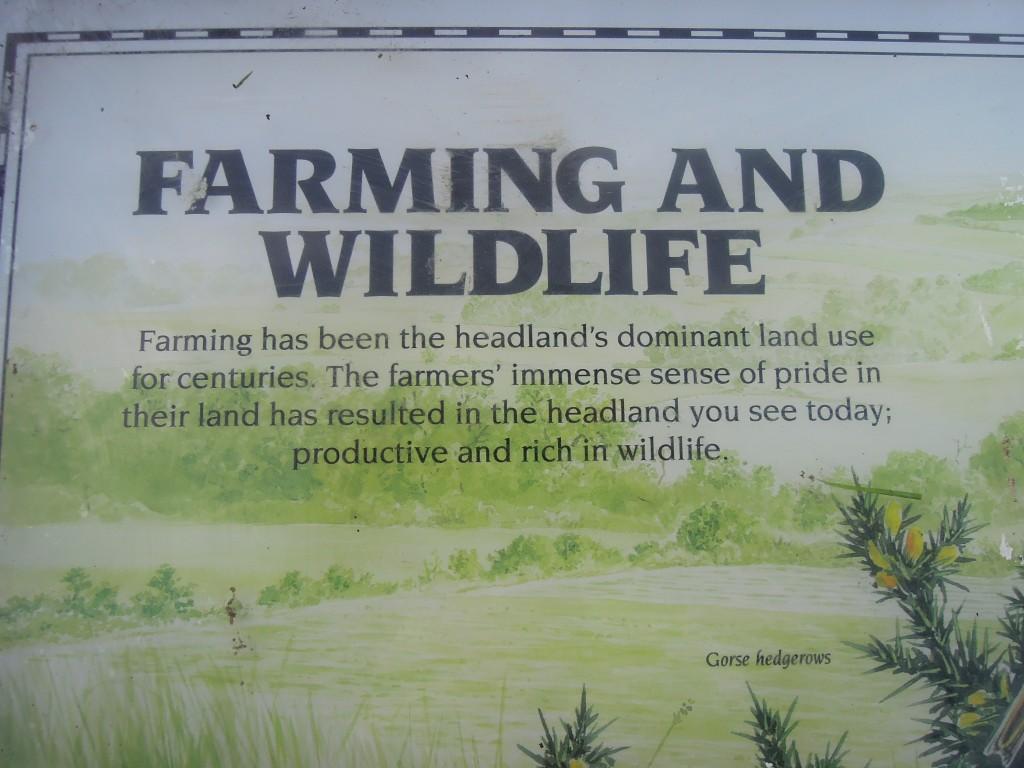 Flamborough Storyboard on farming