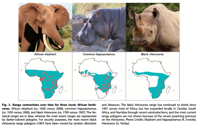 From William J. Ripple et al, 1st May 2015. Collapse of the world's largest herbivores. Science Advances. 2015;1:e1400103
